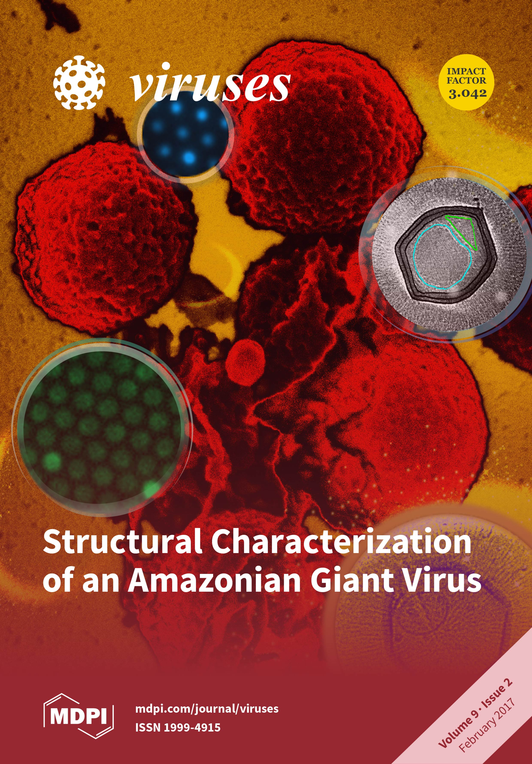 Jason Schrad's image and publication featured on the cover of Viruses.